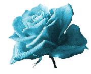 100810_1330_PalabrasdeP1.png