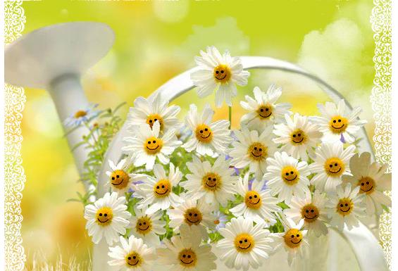 Y las flores siempre sonriendo aunque no sea Navidad